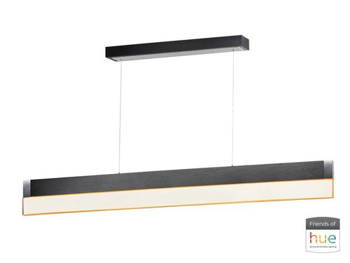 """iBar 4.75"""" x 6"""" Brushed Black Friends of Hue with 1 Light with 2800 Lumens (Aluminum material)"""
