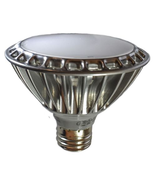 Dimmable LED Light Bulb with Frosted Finish
